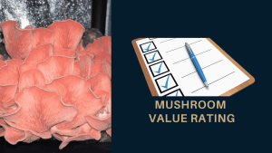 Mushroom Value Rating