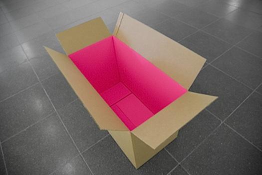 cardboard box painted pink inside