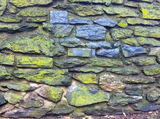 green wall Marcus Garvey Park 2