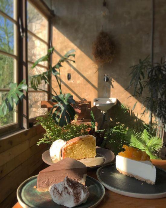 陽明山咖啡廳