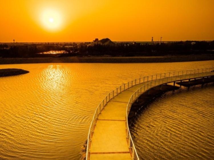 2020台南景點推薦X旅遊攻略(圖片為七股遊客中心)