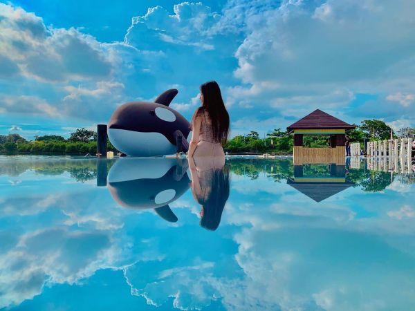 安平虎鯨|天空之鏡|安平景點|台南景點|虎鯨嘉年華|