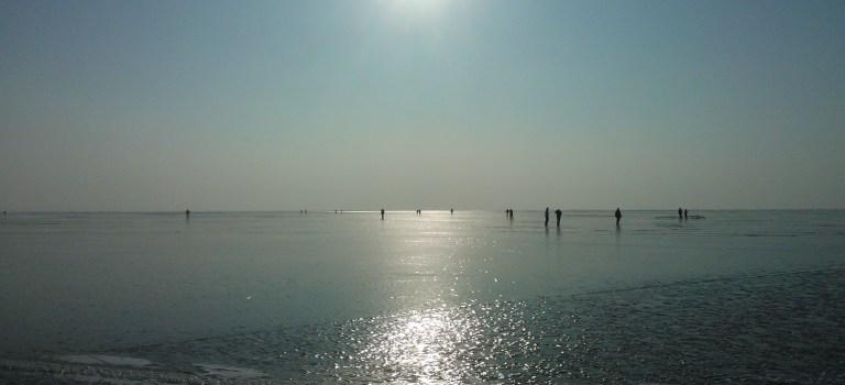 Eislaufen am Neusiedlersee