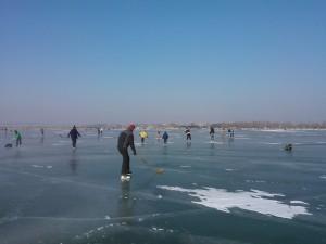 Eisläufer am Neusiedlersee