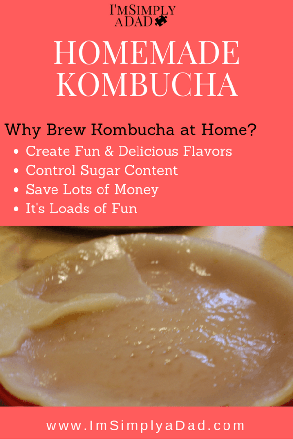 Homemade Kombucha: The benefits of making your own kombucha and how to do it. Insanely Easy!