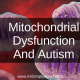 Background image of mitochondria: Text says Treating Autism And Mitochondrial Dysfunction