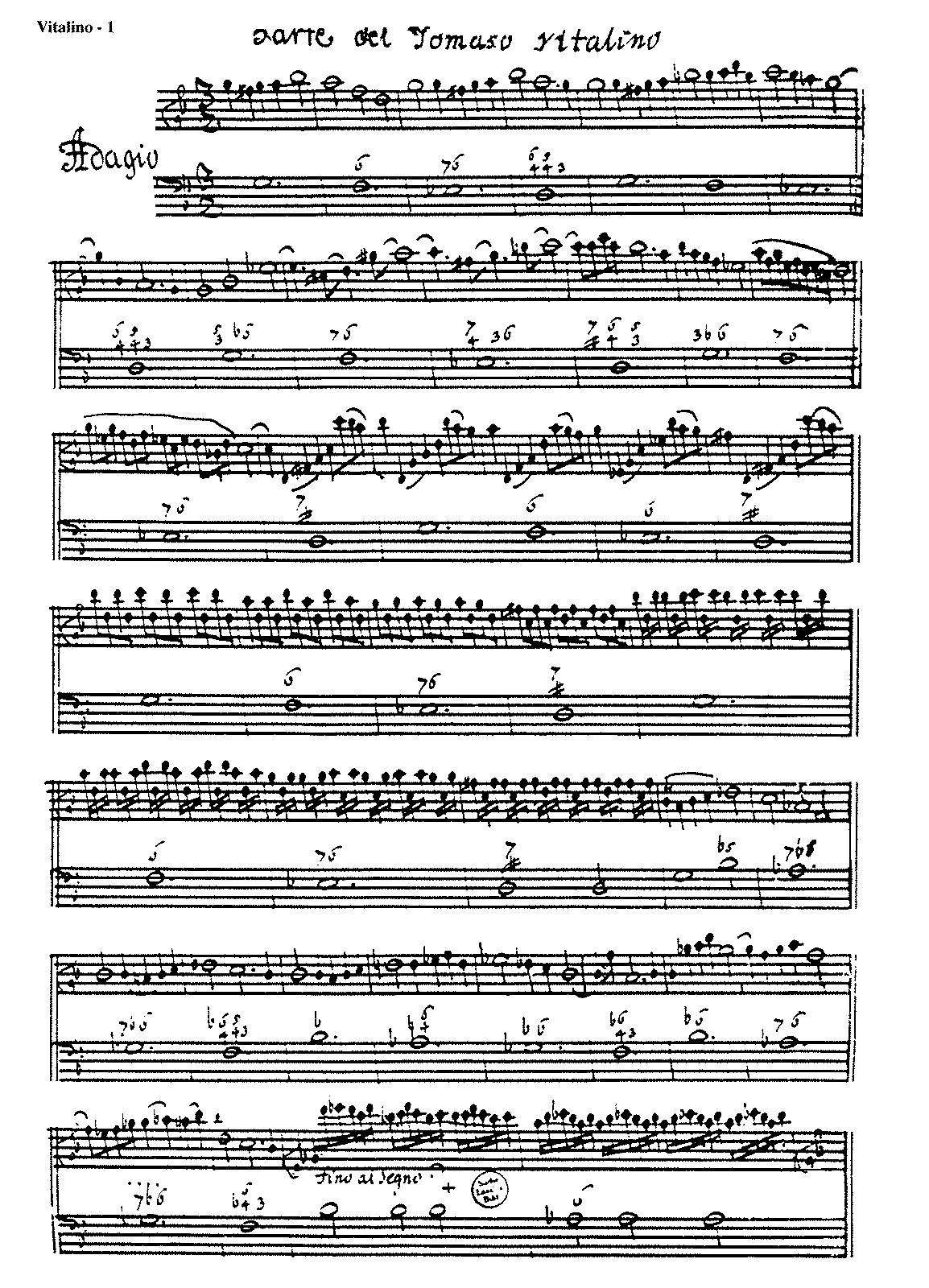 violino vitalino