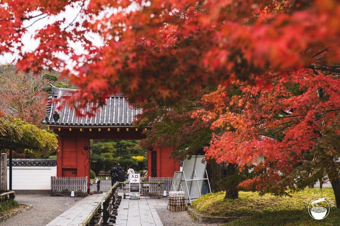 Uji - Byōdō-in