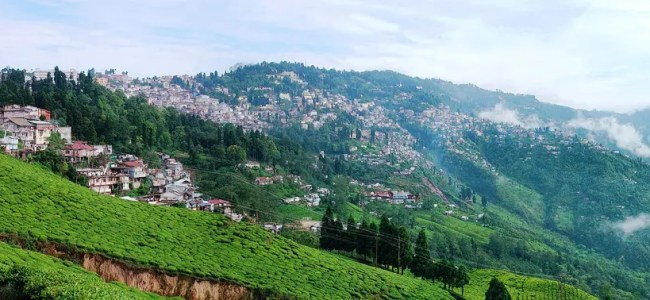What to see in Darjeeling, the Tea Country – Part I