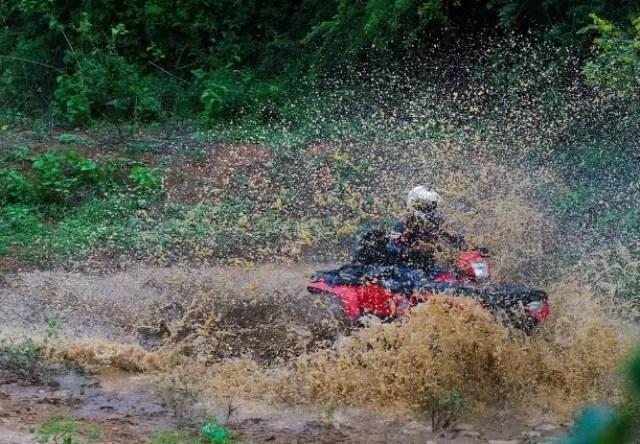 Dirt Mania