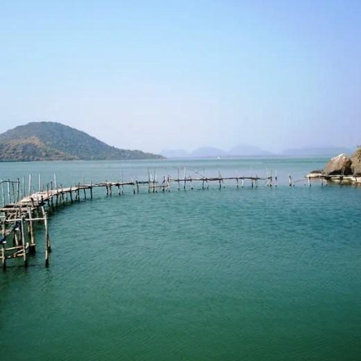 Chilka lake Odisha
