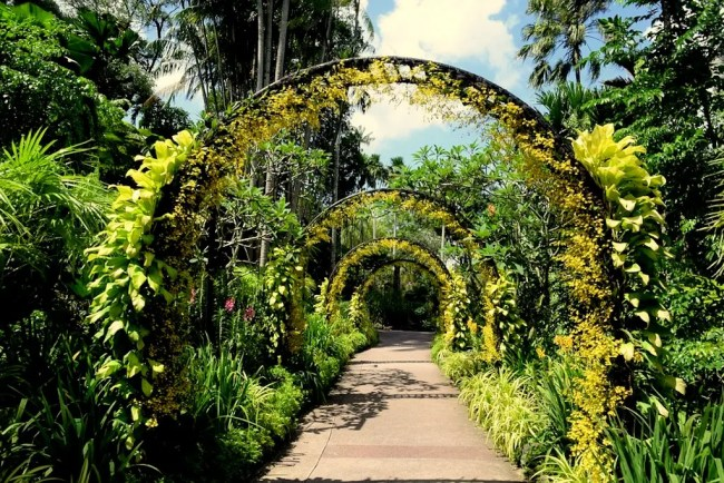 10 must see attractions in singapore best places to for Au jardin singapore botanic gardens