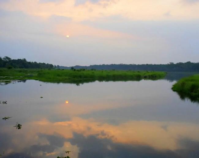Chitwan Jungle Safari | All About Chitwan National Park, Nepal