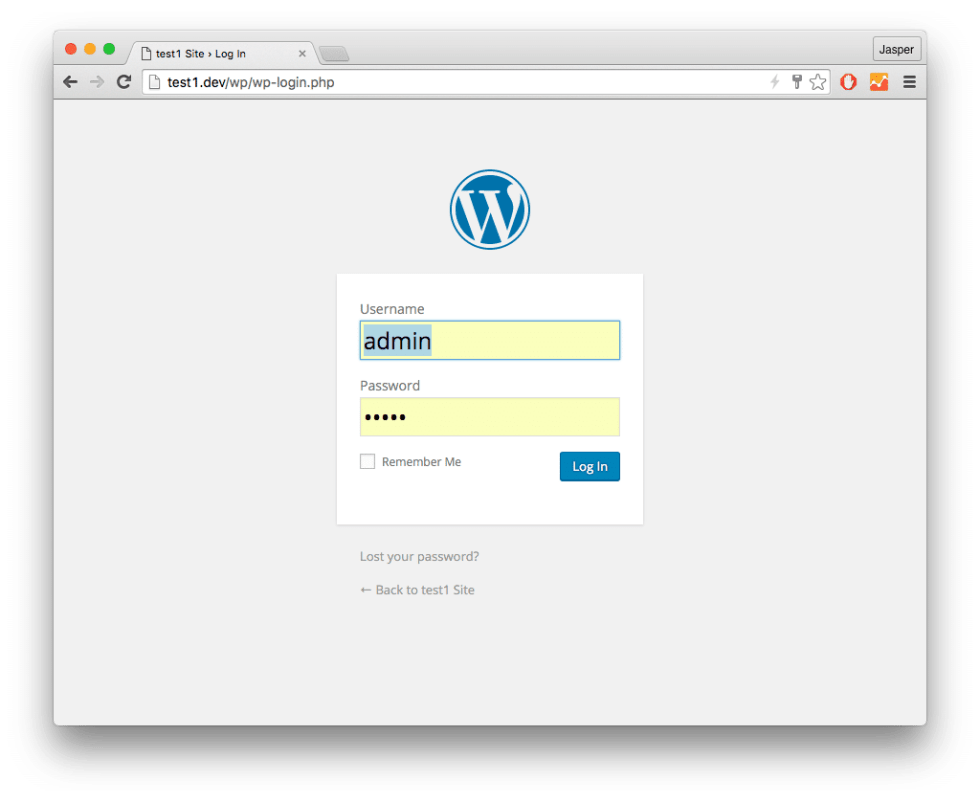 Logging into WordPress