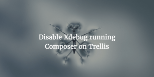 Disable Xdebug Running Composer On Trellis