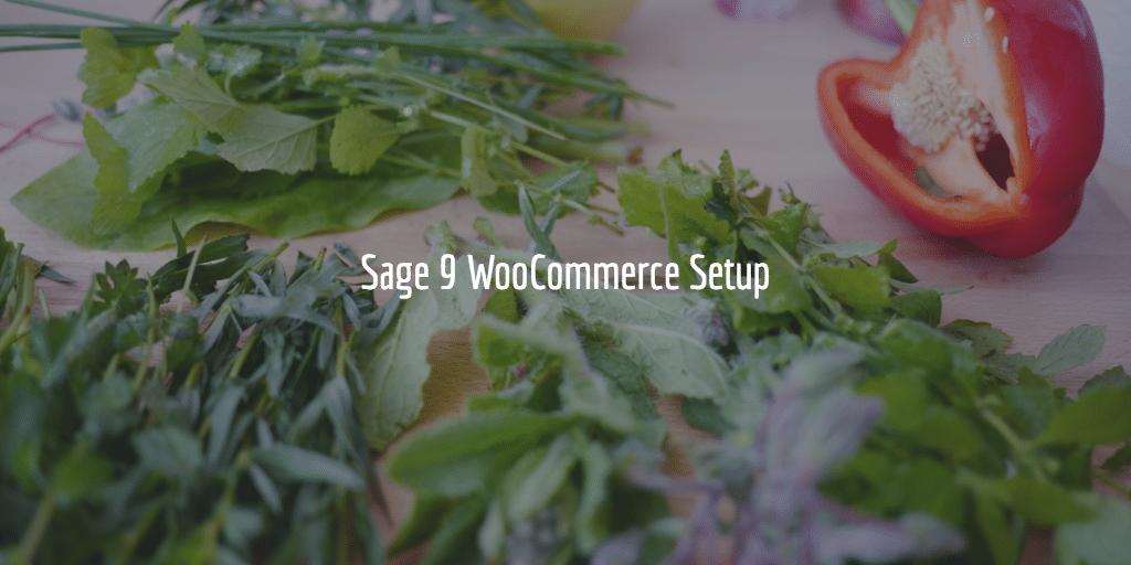 Sage 9 WooCommerce Setup