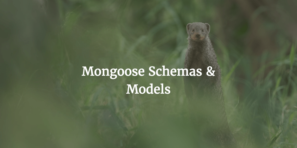 Building A Store With Vue – Part Eight : Mongoose Schemas & Models