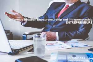 Difference Between Entrepreneurship and Intrapreneurship ppt - Entrepreneurs