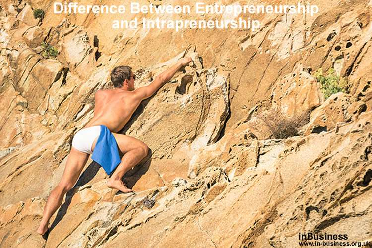 Preneur - this image being about the difference between entrepreneurship and intrapreneurship