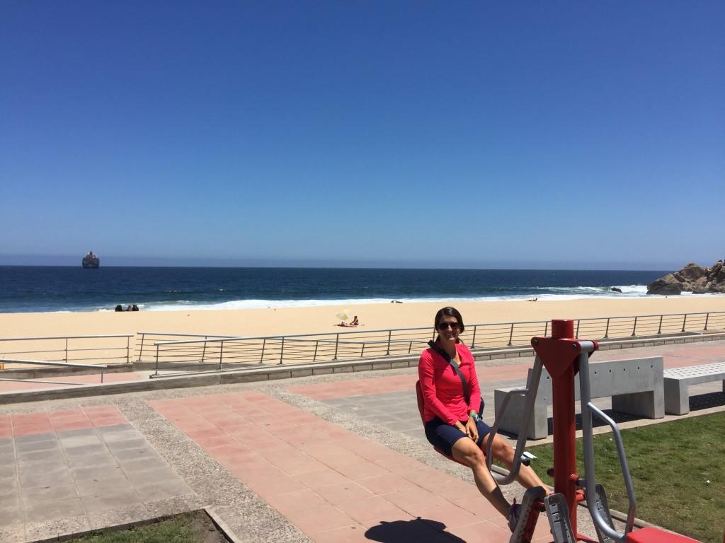Vina Del Mar Beach, Chile