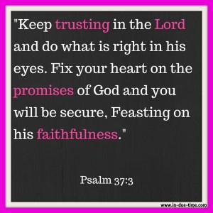 Trust in the Lord - Psalm 37 - In Due Time Blog