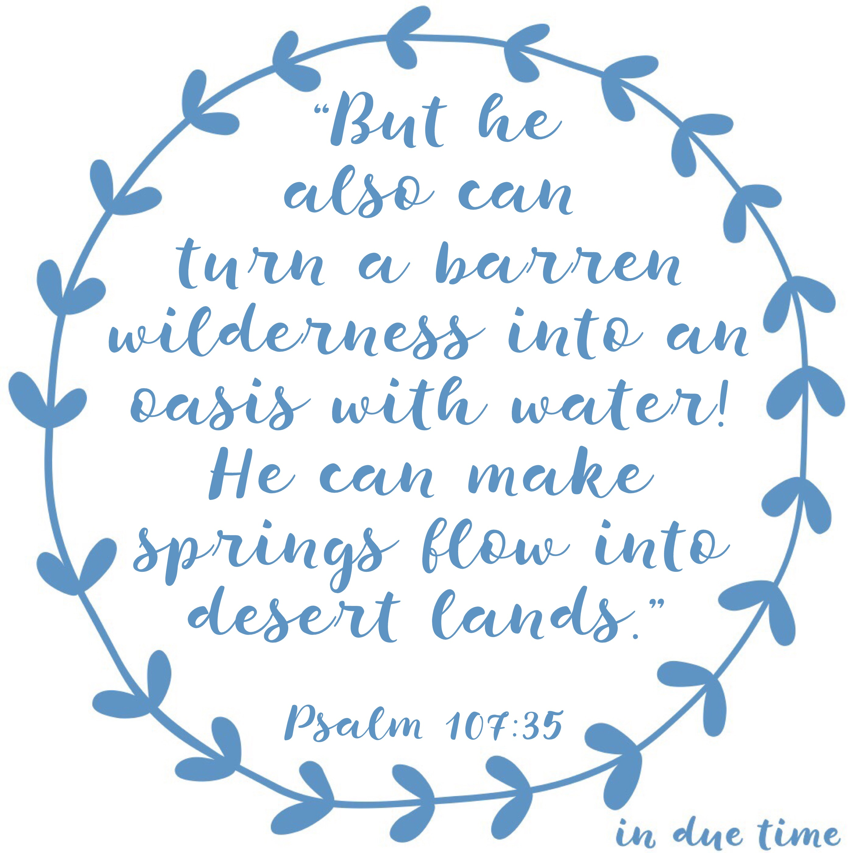 Oasis of Water - In Due Time Blog - Barren