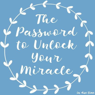 The password to unlock your miracle - in due time blog
