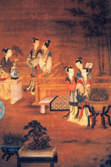 Bonzai 1000BC Ming-Imperial-Court iva wiki