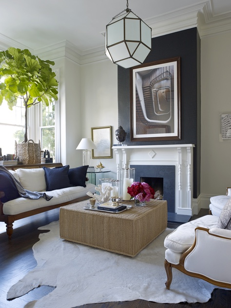 Living room with large plant for height