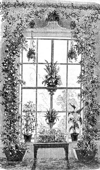 victorian-plants-window-arrangement via oldhouseoline.com