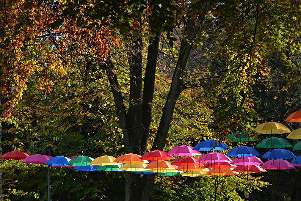 Heiterer Herbst. Die Regenschirminstallation an der Gnadenkirche. Foto: Klaus Hansen