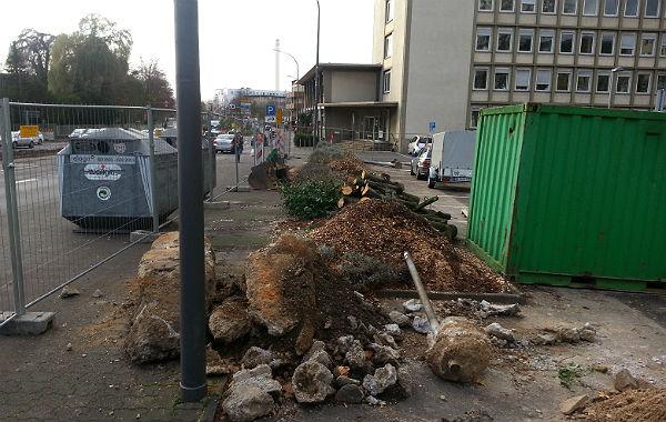 Vor dem Stadthaus wurde ein Baum gefällt, der Parkplatz zum größten Teil mit Containern und Baufahrzeugen belegt