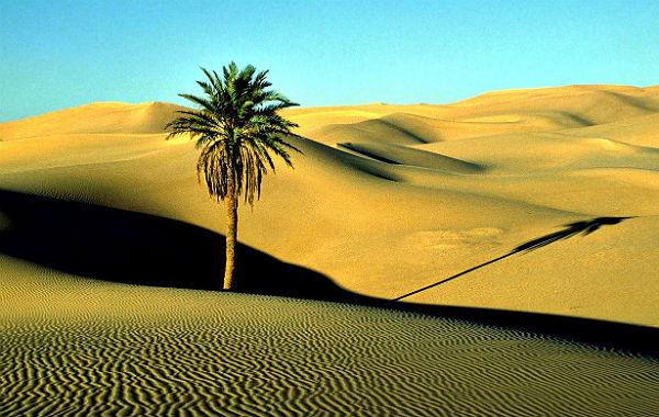 Die libysche Wüste. Foto: Victor Kornijenko/Wikimedia
