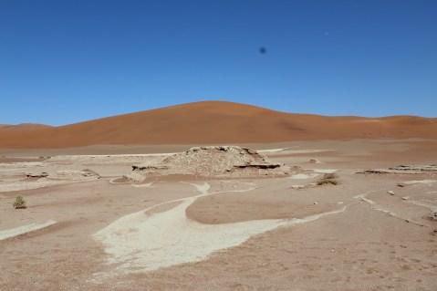 Desert Vlei 1