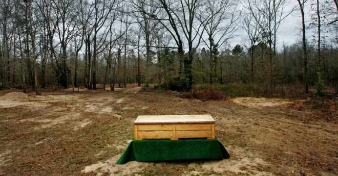 Simple Pine Coffin in Green Forest Funeral