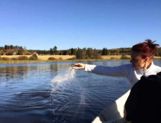Scattering Ashes on a lake