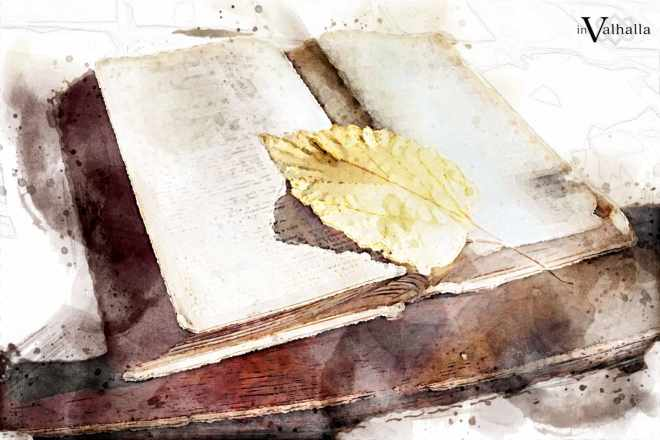 close up of a leaf resting on a Bible