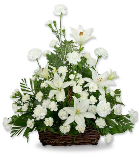 Serene Lily Basket dish garden