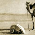 Il musulmano svogliato