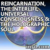 Reincarnation, the 'Interlife', Universal Consciousness & the Holographic Soul