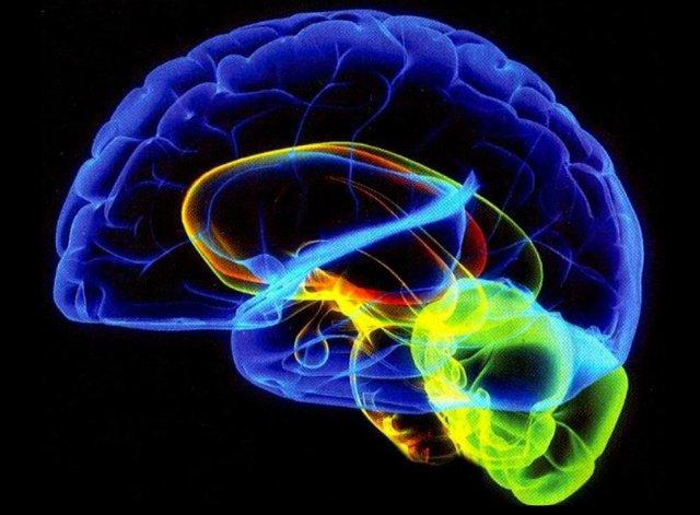 Understanding The <u/><u/>Subconscious Mind: Change Your Mind, Change Your Life  in5d in 5d in5d.com www.in5d.com http://in5d.com/ body mind soul spirit BodyMindSoulSpirit.com http://bodymindsoulspirit.com/