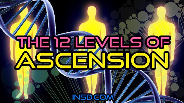 Les 12 niveaux d'ascension