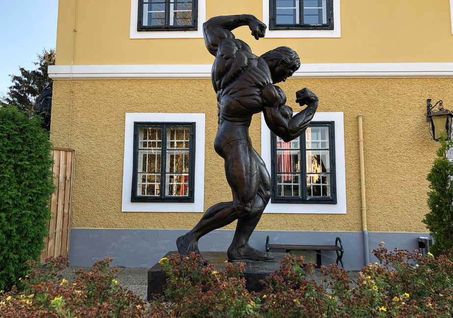 Besuch im Schwarzenegger-Museum
