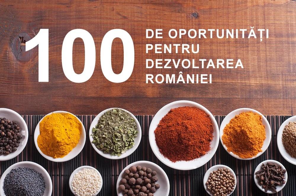 100 de oportunități pentru dezvoltarea României