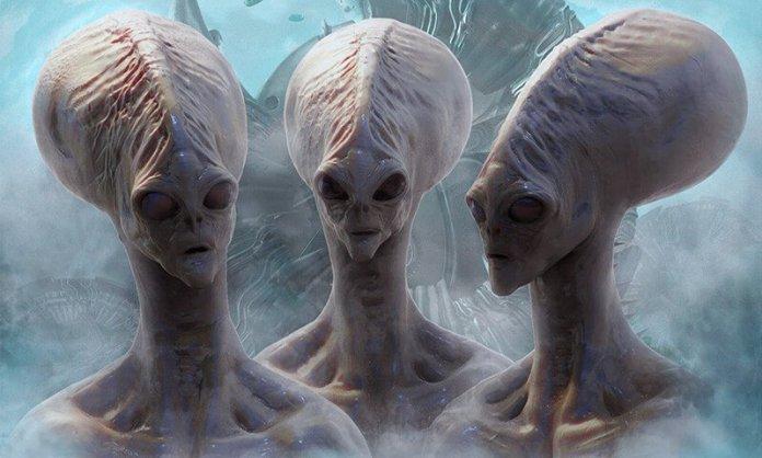 3 41 4 Jenis Alien ini Sudah ada di Bumi Sejak Lama. Pasti Kamu Gak Sadar