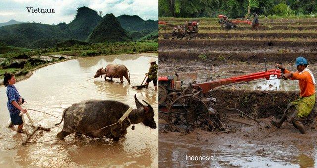 6 34 Ini Nih 10 Bukti Jika Kebiasaan dan Tempat di Vietnam Mirip Seperti di Indonesia. Mau Liat