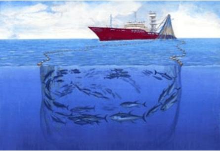 Sistem penangkapan ikan kapal purse seine
