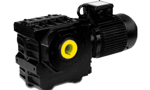 BS Series Submersible Worm Geared Motor