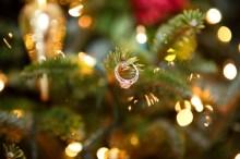 winter-wedding-ring-on-tree-kristen-gornberger-photography