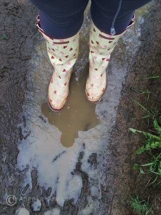 Wellies and me